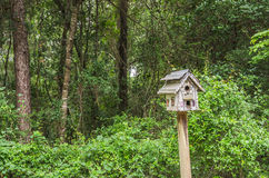 Unique Bird House Royalty Free Stock Photography
