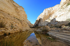 Unique canyon in the  Negev desert. Stock Photography