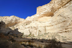 Unique canyon in the  Negev desert. Stock Image