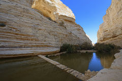 Unique canyon in the  Negev desert. Royalty Free Stock Photography