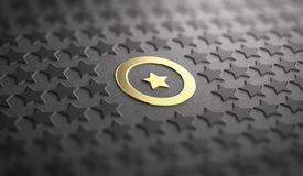 Unique or Difference Concept. Focus on one Golden Star. Many stars in relief on black paper background with focus on a golden one surrounded by a circle. Concept Stock Photos
