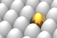 Unique golden egg Royalty Free Stock Photo