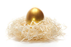 Unique. Golden egg in nest on a white backgound as a concept of unique Stock Photography