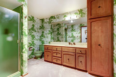 Unique green floral patterned walls of bathroom interior with sh Stock Images