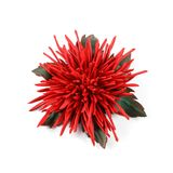 Unique handmade brooch in the form of a red leather flower with green leaves stock photos