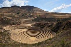 Unique Inca circular terraces Stock Photography