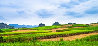Unique Karst landforms. Karst landform and green countryside are unique landscape in Guangxi province ,china royalty free stock photos