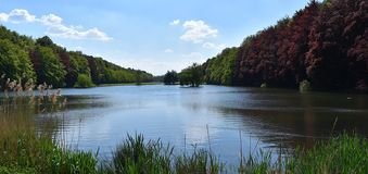 Unique lake in the forest. Relaxing with blue sky and blue water in the beauty of the nature stock image
