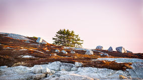 Unique landscape of coastal Nova Scotia Stock Image