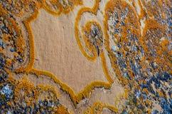 Unique lichen pattern on rock. Unique natural design from orange lichen growing on a rock Stock Photos