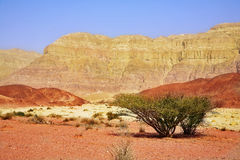 Unique park Timna Royalty Free Stock Photography