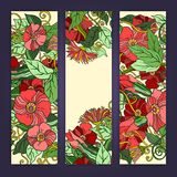 Unique pattern card set with art flowers. Unique abstract  hand drawn pattern card set with art flowers and leaves.  Series of image Template frame design for Stock Photos