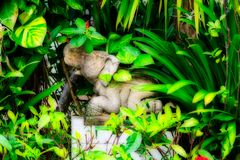 Stone Elephant in the Jungle royalty free stock photo