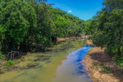 Natural river in a forest. This unique photo shows a small natural river that passes through Thailand`s untouched unique nature royalty free stock images