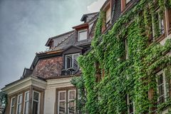Romantic balcony with ivy in Strassburg. This unique photo shows a very small super romantic balcony on an old house that is completely covered with ivy. the stock photography