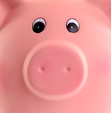 Unique pink ceramic piggy bank Royalty Free Stock Photography
