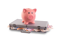 Unique pink ceramic piggy bank Royalty Free Stock Image