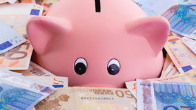 Unique pink ceramic piggy bank drowning in money Royalty Free Stock Photos