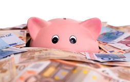 Unique pink ceramic piggy bank drowning in money. Isolated on white Stock Photography