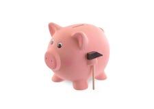 Unique pink ceramic piggy bank Royalty Free Stock Photos