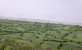 Unique plains landscape with trees in north of Iran, Gilan royalty free stock photos