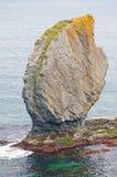 Unique Rocks along the Ocean Stock Photos