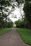 Unique Royal Botanical gardens in Peradeniya is considered as one of the best in Asia Stock Images