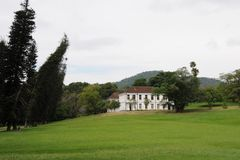 Unique Royal Botanical gardens in Peradeniya is considered as one of the best in Asia Stock Photos