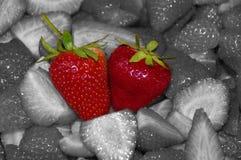 Unique strawberries Stock Photo
