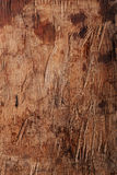 Unique and textured old wooden grunge wooden background stock ph Stock Photography