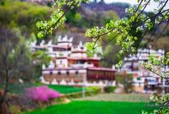 Unique Tibetan Architecture In Spring Stock Photos