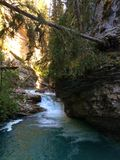 Water cascade and falling tree in Scenic Johnston Canyon, Banff National Park stock photo