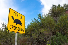 Unique turtle crossing sign. In B.C., Canada with blue sky & slouds in the background Royalty Free Stock Photography
