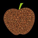 Unique vector apple with turtle scales patterns royalty free illustration