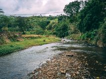 Unique View of a stream in a rural area Stock Image