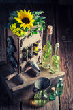 Unique virgin oil machine with sunflower and seeds Stock Image
