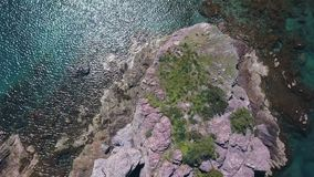 Unique wild flora on basalt rock in Mediterranean sea, drone is moving up and rotating. Amazing aerial view stock video