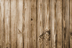 Unique Wooden Pine background or texture. Vertical lines brown Stock Images