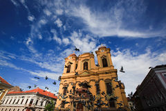 Unirii Square in Timisoara, Romania pigeons flying sunny day. Blue sky with clouds Royalty Free Stock Images