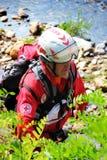 Unité canine volontaire de la Croix-Rouge italienne pendant une démonstration Images stock