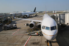 United Airlines and ANA Star Alliance planes at the gates at the Terminal 7 at John F Kennedy International Airport Royalty Free Stock Photo