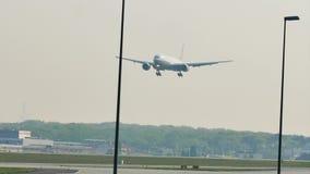 United airplane landing on Frankfurt Airport FRA. United jet lands in Frankfurt Airport FRA, Germany stock footage