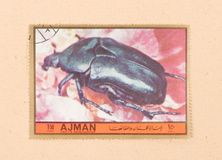 A stamp printed in the United Arab Emirates shows a beetle, circa 1972. UNITED ARAB EMIRATES - CIRCA 1972: A stamp printed in the United Arab Emirates shows a stock photography