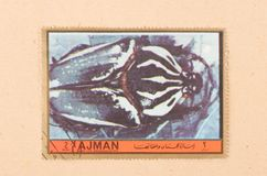 A stamp printed in the United Arab Emirates shows a beetle, circa 1972. UNITED ARAB EMIRATES - CIRCA 1972: A stamp printed in the United Arab Emirates shows a stock photo