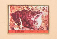 A stamp printed in the United Arab Emirates shows a bird, circa 1972. UNITED ARAB EMIRATES - CIRCA 1972: A stamp printed in the United Arab Emirates shows a bird royalty free stock photography