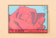 A stamp printed in the United Arab Emirates shows a tulip, circa 1972. UNITED ARAB EMIRATES - CIRCA 1972: A stamp printed in the United Arab Emirates shows a royalty free stock photos