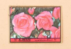 A stamp printed in the United Arab Emirates shows a tulip, circa 1972. UNITED ARAB EMIRATES - CIRCA 1972: A stamp printed in the United Arab Emirates shows a royalty free stock image