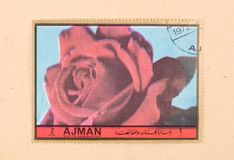 UNITED ARAB EMIRATES - CIRCA 1972: A stamp printed in the United Arab Emirates shows a tulip, circa 1972. A stamp printed in the United Arab Emirates shows a royalty free stock photography