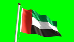 United Arab Emirates flag. (seamless & green screen stock footage