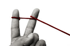 United fingers. Two fingers are bound by a rope attempting to unite them together Stock Photo
